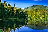 stock photo of cloud forest  - landscape by the lake in the early morning. coniferous forest near the lake and the forest mountain