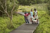 stock photo of marshes  - Teacher showing something to children during nature field trip - JPG