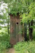 stock photo of outhouse  - Rural old outhouse in summer  - JPG
