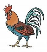 image of roosters  - Vector colorfull cartoon rooster for farm or village - JPG
