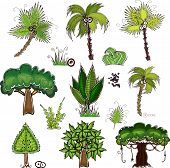 picture of oasis  - set of jungle trees  - JPG