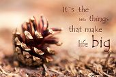 picture of proverb  - Fir Cone with the Saying Its the Little Things That Make Life Big as Autumn Background - JPG