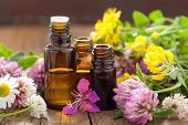 stock photo of essential oil  - essential oils and medical flowers herbs - JPG