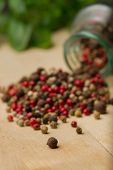 stock photo of peppercorns  - Heap of peppercorns on top of wooden table before glass jar and fresh basilica. Vertical photo. Selective focus on peppercorn in front. Recipe book photography.