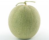 picture of cantaloupe  - Cantaloupe melon Isolated on a White Background - JPG