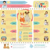 picture of petting  - Veterinary infographics flat set with pet health care design elements vector illustration - JPG