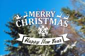 foto of blue spruce  - Merry Christmas and New Year greeting card on blurred spruce or fir - JPG