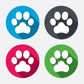 picture of petting  - Dog paw sign icon - JPG