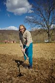 picture of potato-field  - Senior woman covering potatoes on a fresh plowed field - JPG