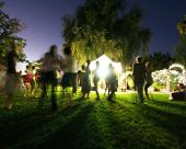 pic of moonlit  -  people mingling at a free concert by local musicians long exposure at night  - JPG