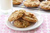 image of cookie  - Homemade peanut butter cookies with glass of milk and cookies cooling on rack in background - JPG