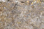 pic of granite  - texture of a granite stone with different colors - JPG