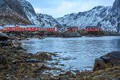 picture of lofoten  - The coast of the Lofoten Islands in Norway - JPG