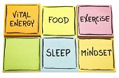 vital energy concept - food, exercise, mindset and sleep handwritten in black ink on colorful sticky poster
