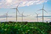 Wind Turbine Farm, Wind Energy Concept. poster