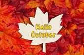 Hello October Message, Some Fall Leaves And A Wood Maple Leaf With Text Hello October poster
