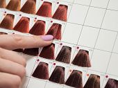 Color Palette For Hair Coloring. Hair Coloring. Selection Of Color. poster