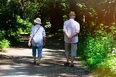 Middle Aged Couple Is Walking In Forest. Woods On Sides Of Trail. Elderly Couple Is Walking In Green poster