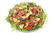 Healthy Salad Of Organic Salad With Canned Tuna, Tomatoes, Chicken Eggs, Arugula, Red Onion And Micr poster