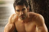 stock photo of hunk  - Sexy masculine man shirtless outdoors against tree - JPG