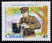 CANADA - CIRCA 1996: stamp printed in Canada shows Winnie and Lt. Coleboum white river circa 1996