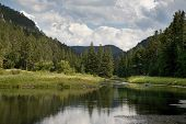 stock photo of spearfishing  - A trout stream and pond in the Spearfish Canyon area of the Black Hills of South Dakota USA - JPG