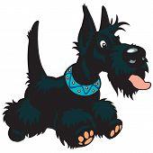 stock photo of scottie dog  - cartoon dog scottich terrier breed - JPG