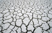 picture of water shortage  - Cracked dry earth - JPG