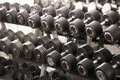 pic of racks  - A rack of dumbbells in a gym - JPG