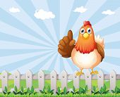 stock photo of bird fence  - Illustration of a big fat hen above the fence - JPG