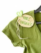 stock photo of naturalist  - green shirt with organic label on a hanger - JPG