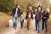 pic of multi-generation  - Multi Generation Family On Countryside Walk - JPG