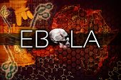 foto of sudan  - Ebola virus illustration with a map and microscope - JPG