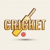 pic of cricket bat  - Cricket sports concept with bat - JPG