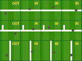 foto of hawk  - Tennis Hawk Eye Challenge Results in a Grass Court - JPG
