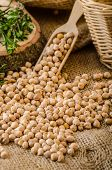 stock photo of legume  - Raw and healthy chickpeas Simple but delicious legume used in Middle Eastern cuisine - JPG
