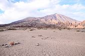 foto of canary  - Teide National Park in Tenerife at Canary Islands - JPG
