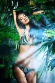 picture of tropical plants  - Beautiful sexy woman in bikini among tropical plants - JPG