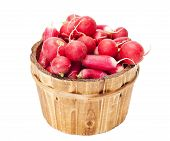 stock photo of radish  - wooden bucket full of radish isolated on a white background - JPG