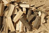 picture of firewood  - Heap of chopped hornbeam firewood over sawdust in bright sunlight - JPG