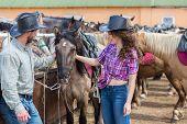 stock photo of feeding horse  - cowboy couple stroking and feeding  a horse - JPG
