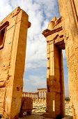 picture of euphrat  - historic temple of ancient palmyra in syria - JPG