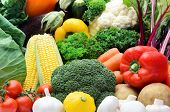 Close up of fresh raw organic vegetable produce, assortment of corn, peppers, broccoli, mushrooms, b poster