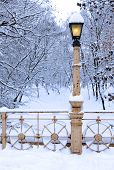 Lamp Post Covered By Snow In Park