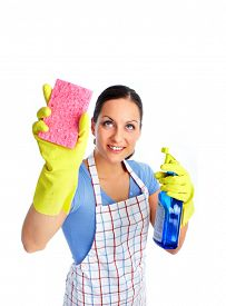 pic of maids  - Maid woman with sponge and spray - JPG