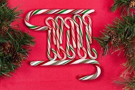 stock photo of candy cane border  - Peppermint candy canes with evergreen branches as side borders on red background - JPG