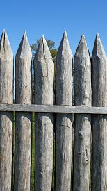 image of stockade  - Reconstructed Limes palisade at Vielbrunn  - JPG