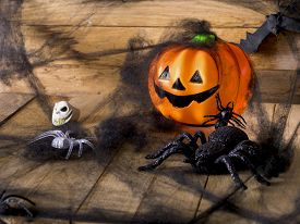 image of antichrist  - Halloween party toys with pumpkin and spiders - JPG