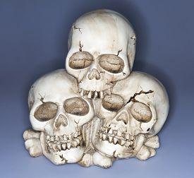 pic of eye-sockets  - Old weathered human skull  - JPG