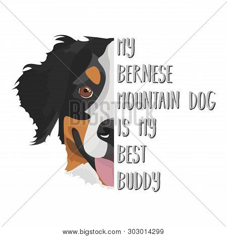poster of Illustration Dog Bernese Mountain Dog - My Bernese Mountain Dog Is My Best Friend. Puppy Dog ​​eyes,